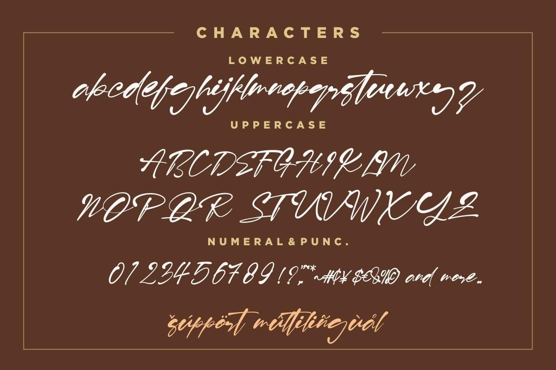 Risolla-Calisto-Bold-Handwritten-Script-Font-4