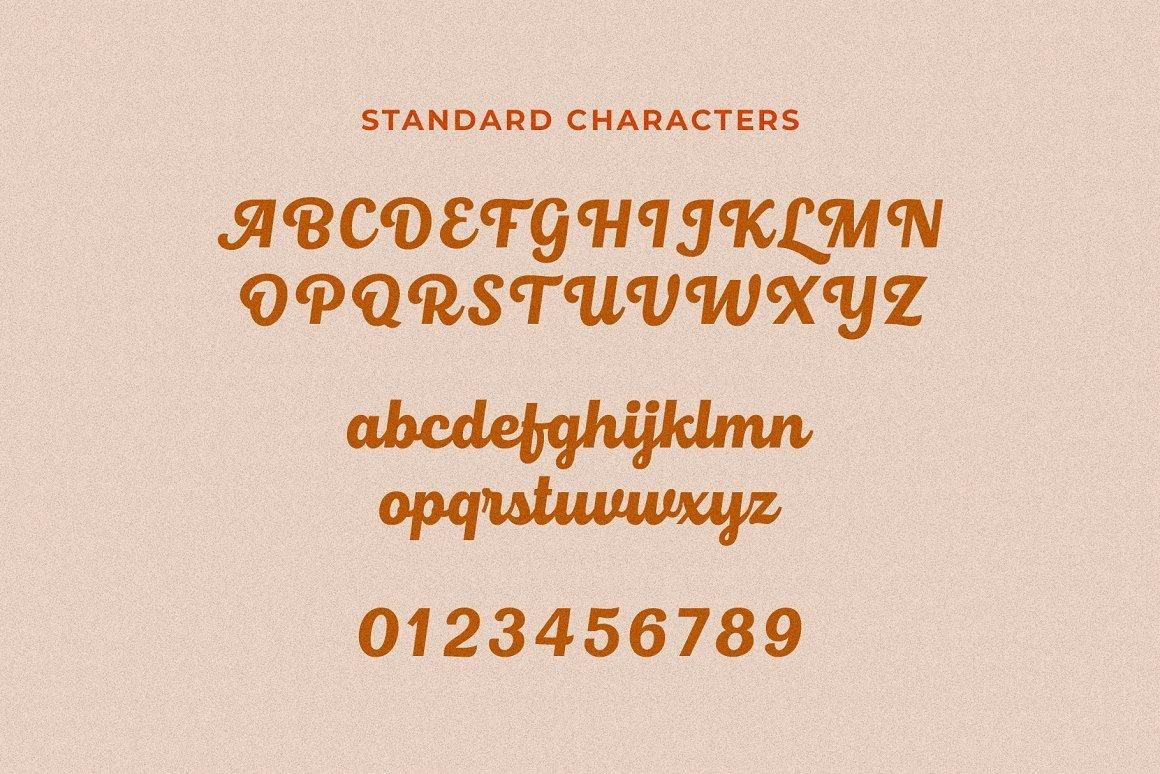 Roshelyn-Bold-Script-Font-3