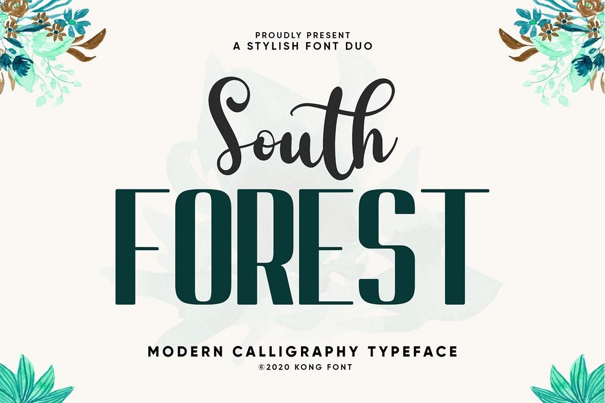 South-Forest-Sans-Script-Font-Duo-1