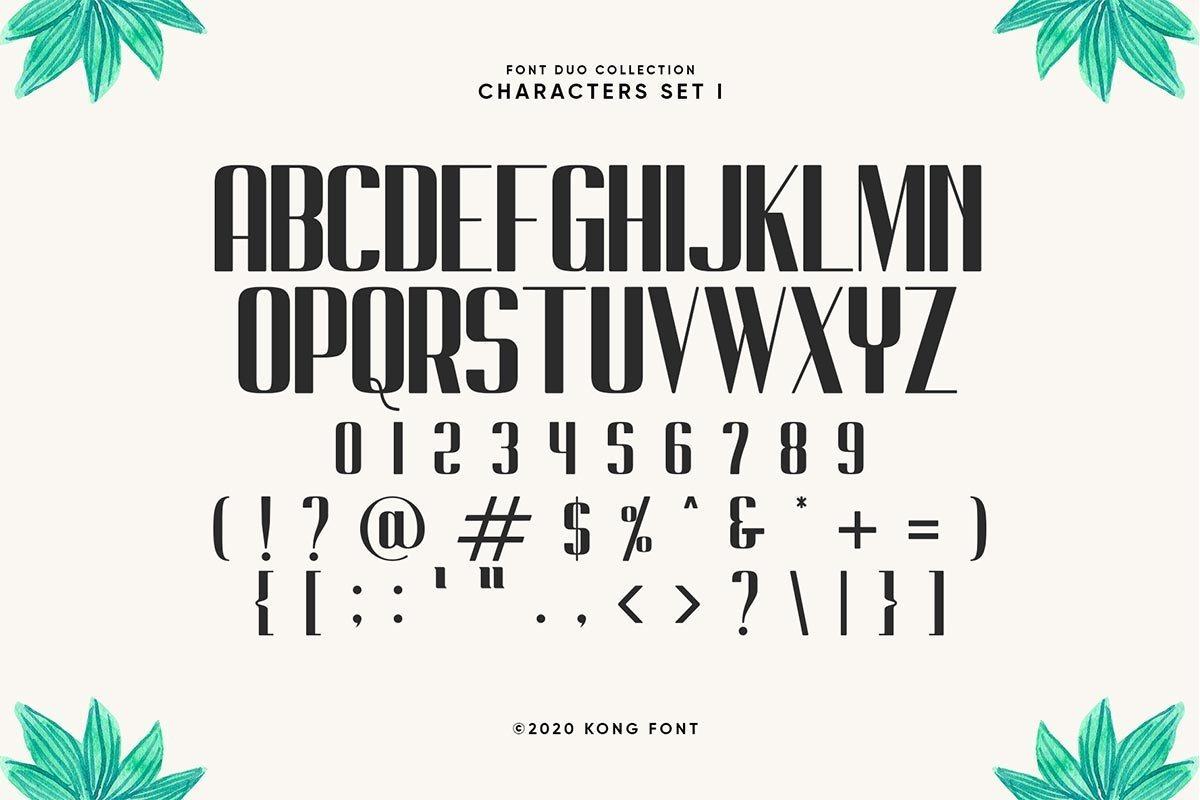 South-Forest-Sans-Script-Font-Duo-3