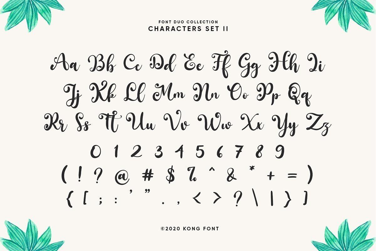 South-Forest-Sans-Script-Font-Duo-4