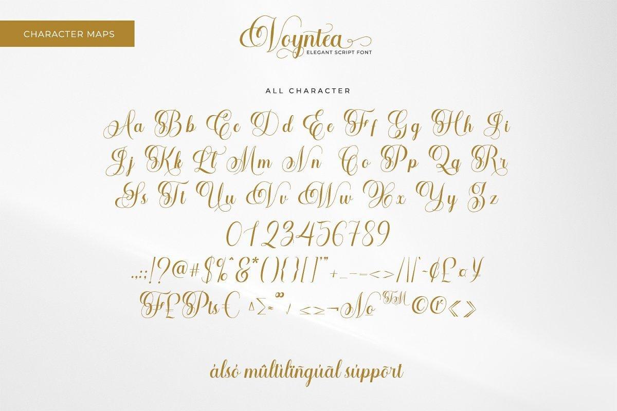 Voyntea-Elegant-Calligraphy-Script-Font-4