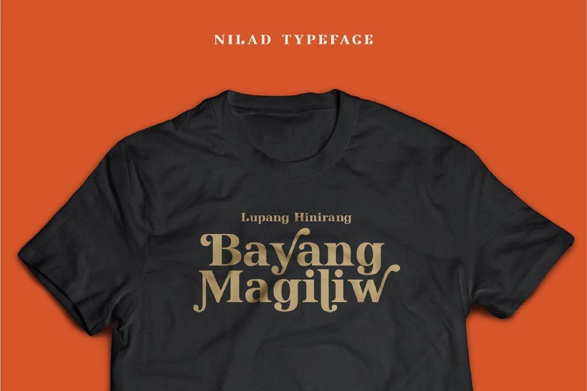 Nilad-Modern-Serif-Typeface-2
