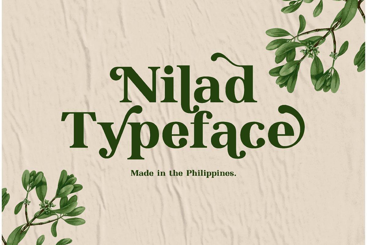 Nilad-Modern-Serif-Typeface