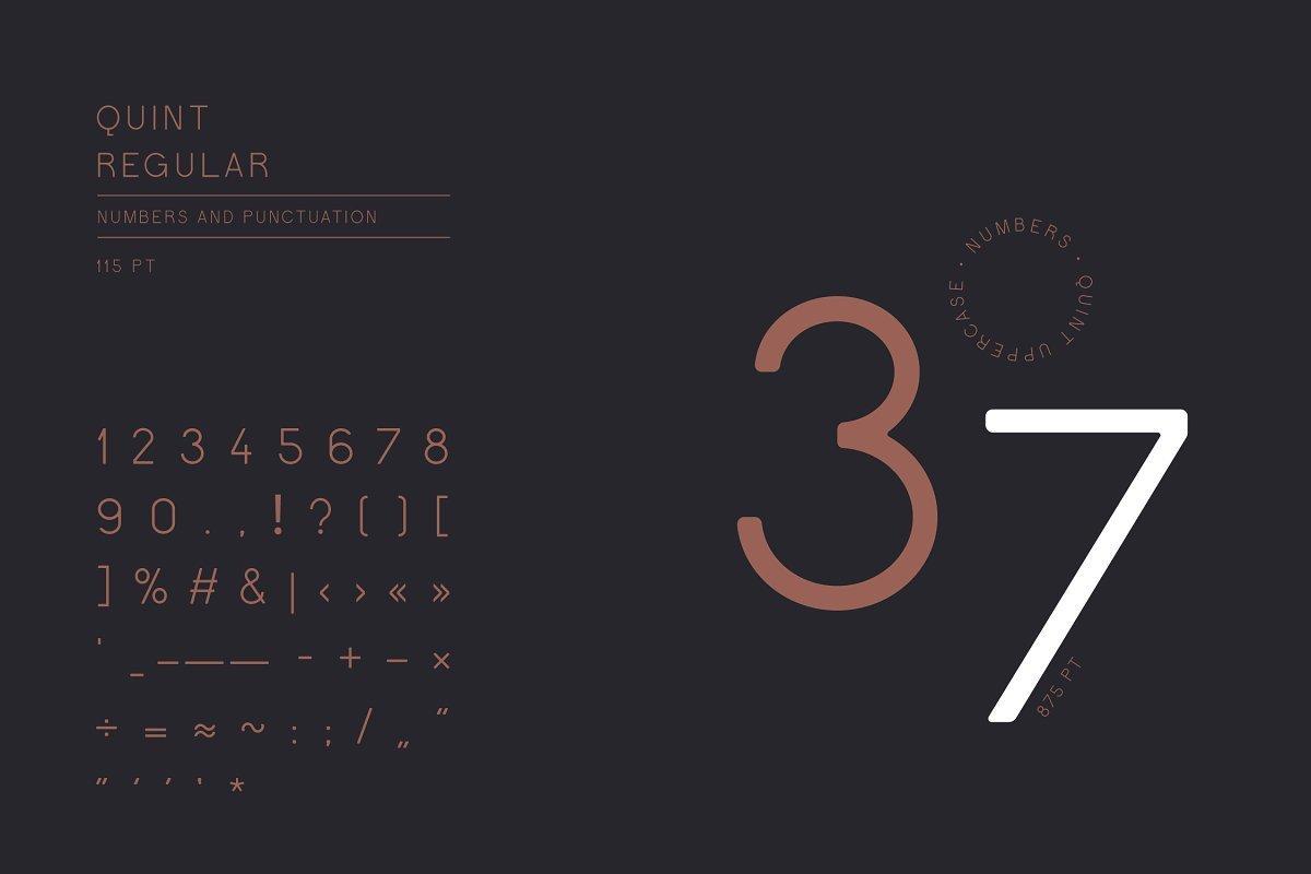 Quint-Uppercase-Sans-Serif-Font-3